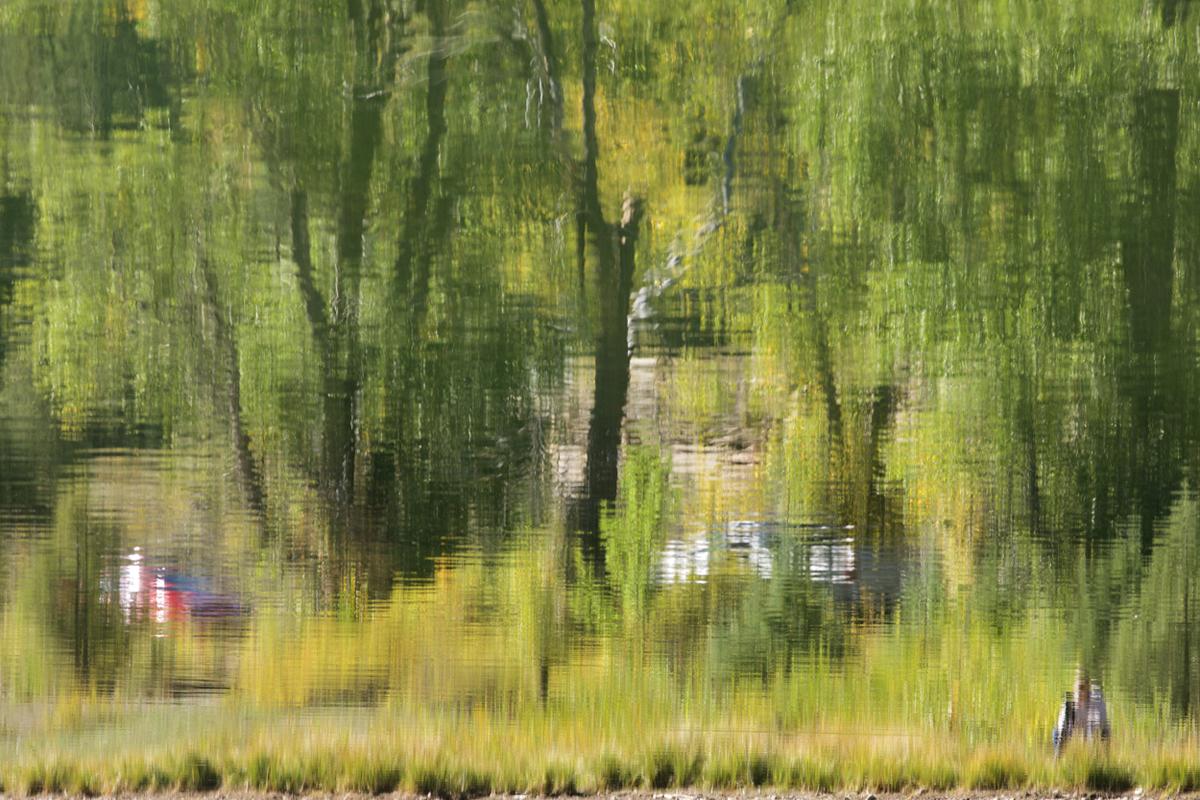 photographer01_edited-1.jpg