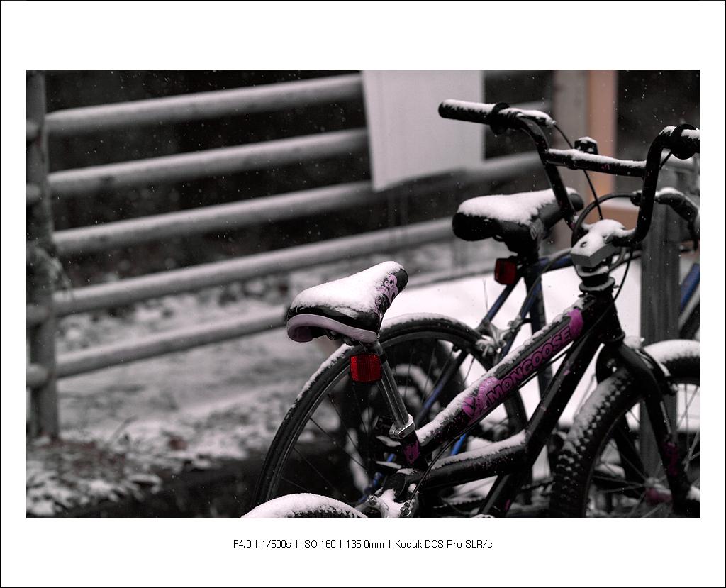 F6K82508.jpg