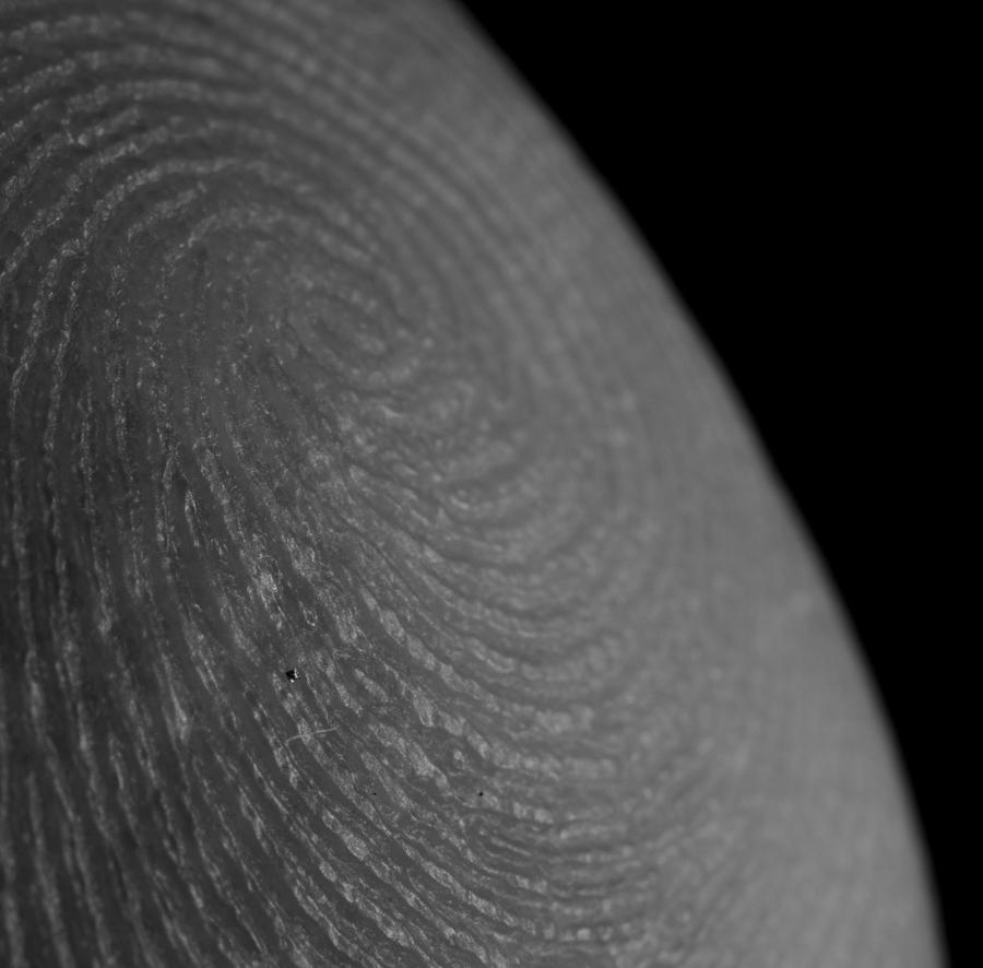 fingerprint (1 of 1).jpg