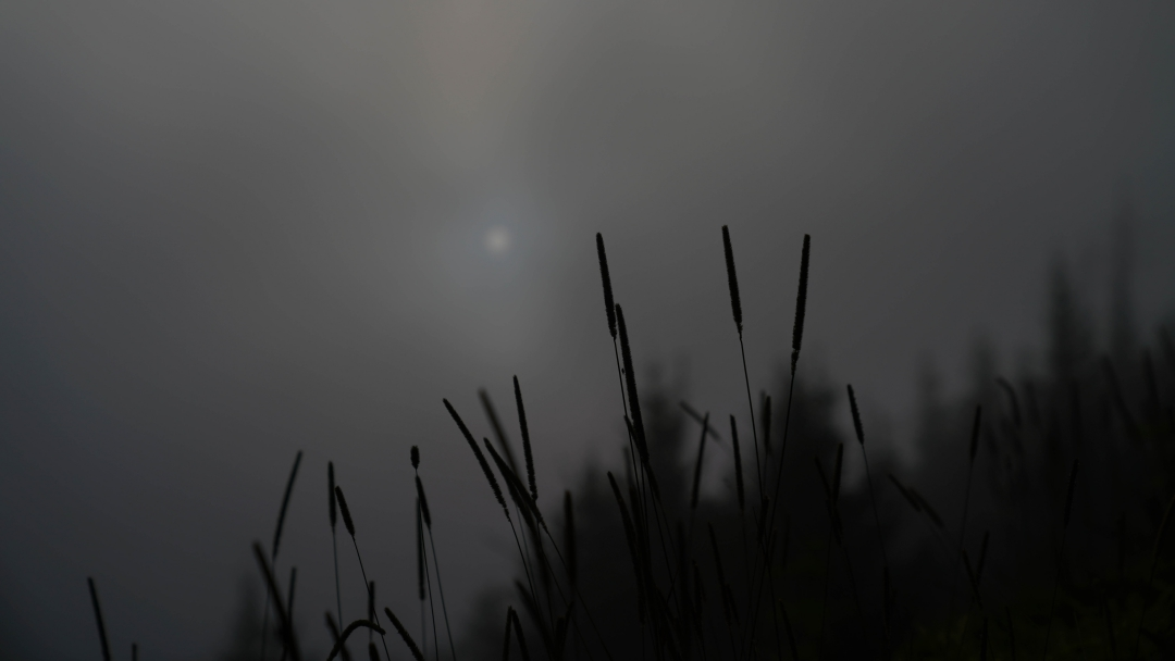 clingmans dom.jpg-2.jpg