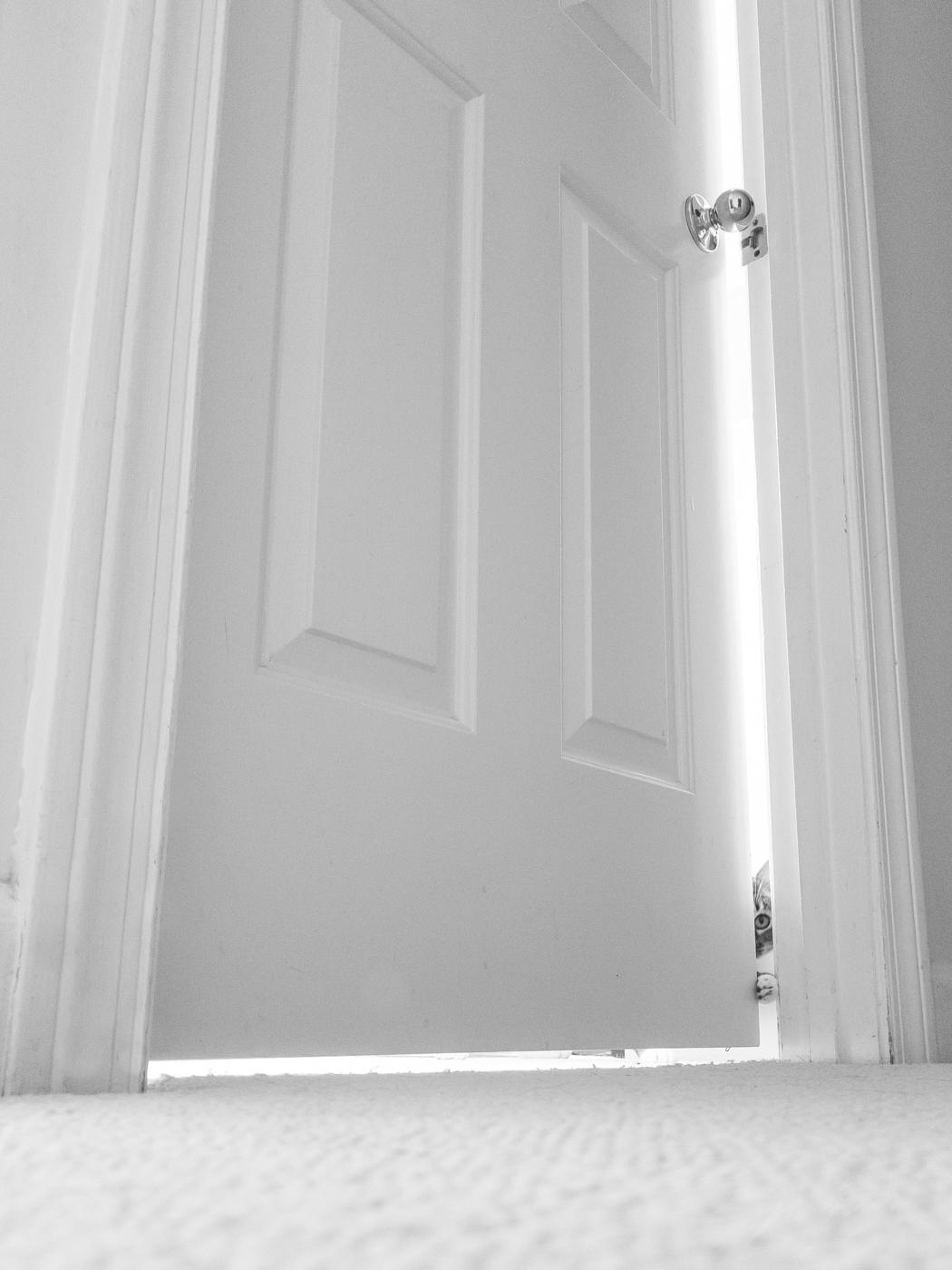 180428_Mocha_Room_Door_090217.jpg