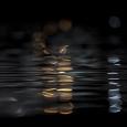 빛과 물결