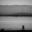 SF Bay에서...
