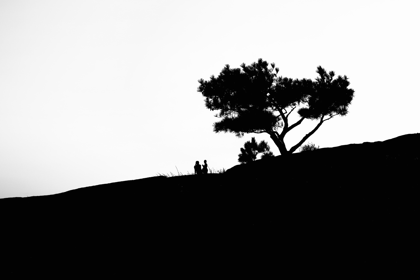 Hill0001.jpg