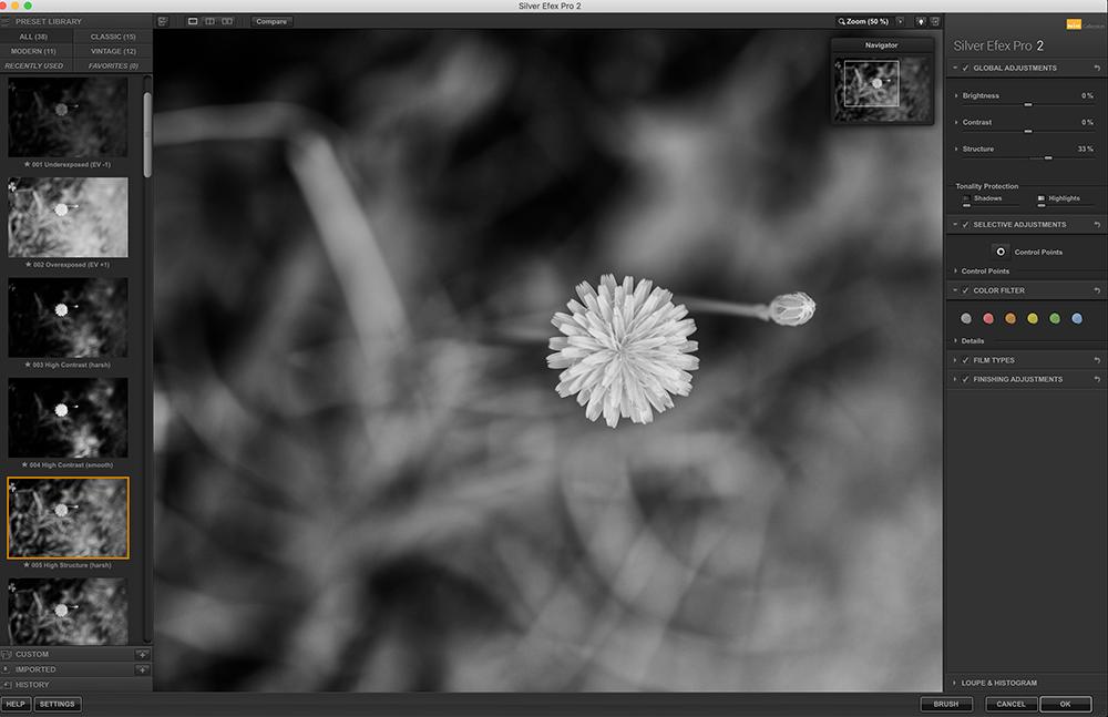 Screen Shot 2020-10-18 at 1.41.52 AM copy.png